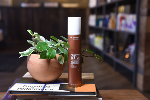 Goldwell Dry Boost 2