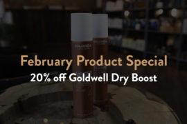 Goldwell Dry Boost: February Product Special