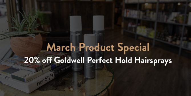 March Product Special: 20% off Goldwell Perfect Hold Hairsprays